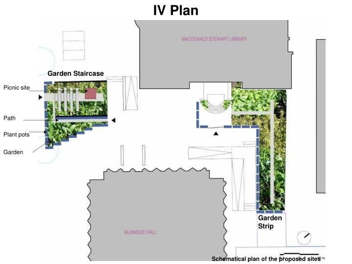 IV Plan