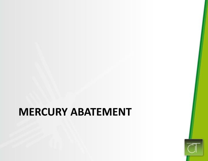 Mercury Abatement