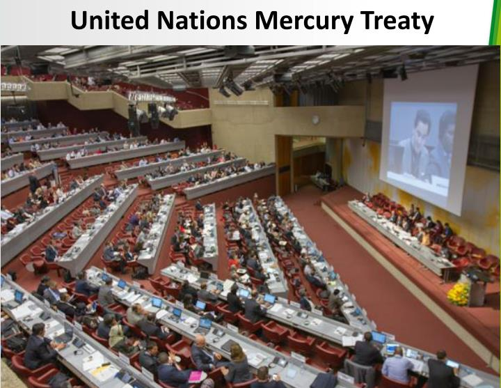 United Nations Mercury Treaty