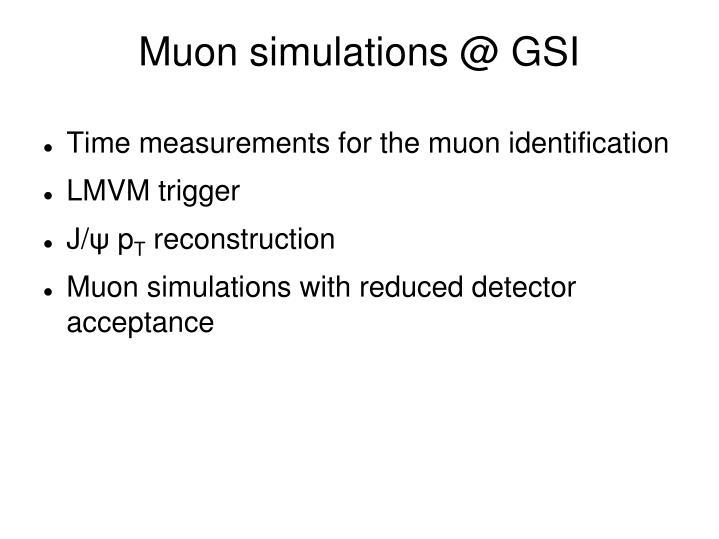 Muon simulations @ GSI