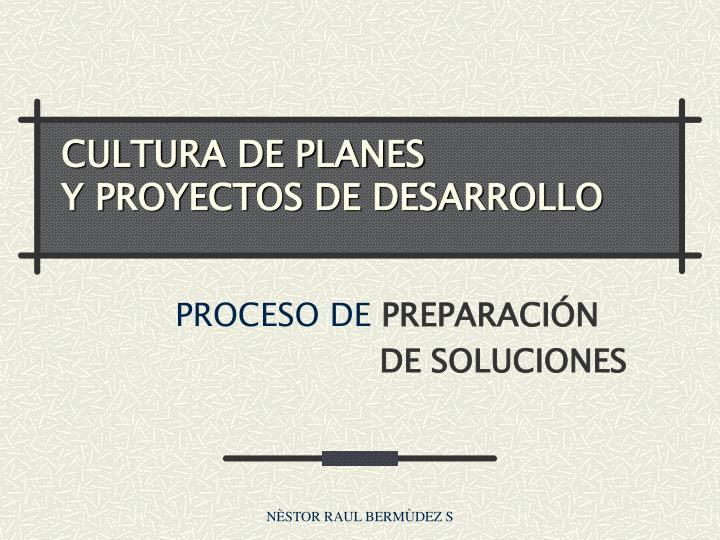 CULTURA DE PLANES