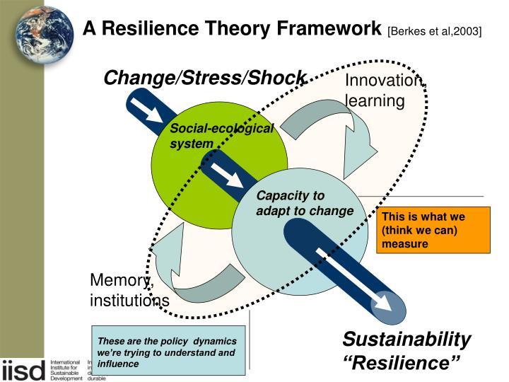 A Resilience Theory Framework