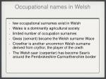 occupational names in welsh