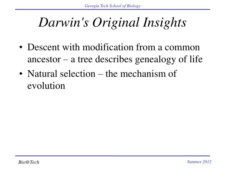 Darwin's Original Insights