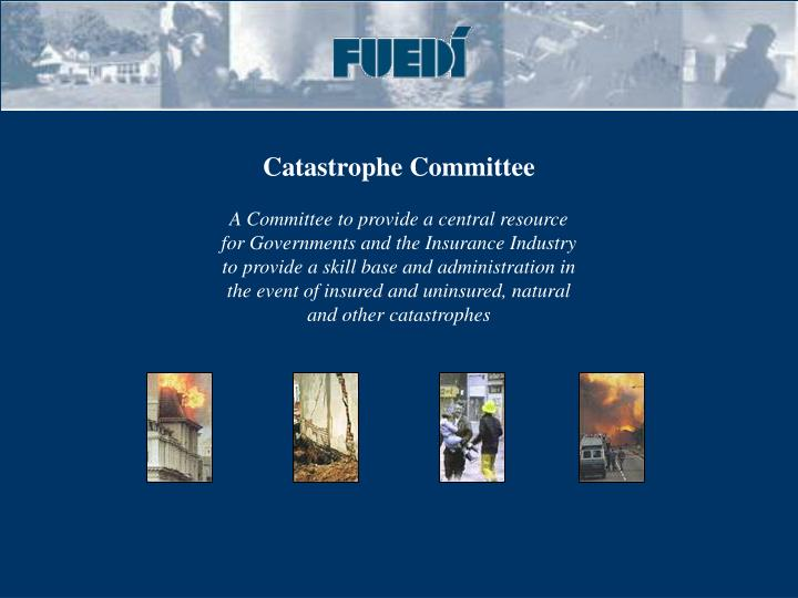 Catastrophe Committee