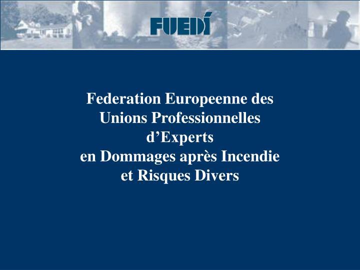 Federation Europeenne des Unions Professionnelles d'Experts