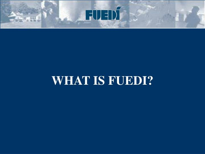 WHAT IS FUEDI?