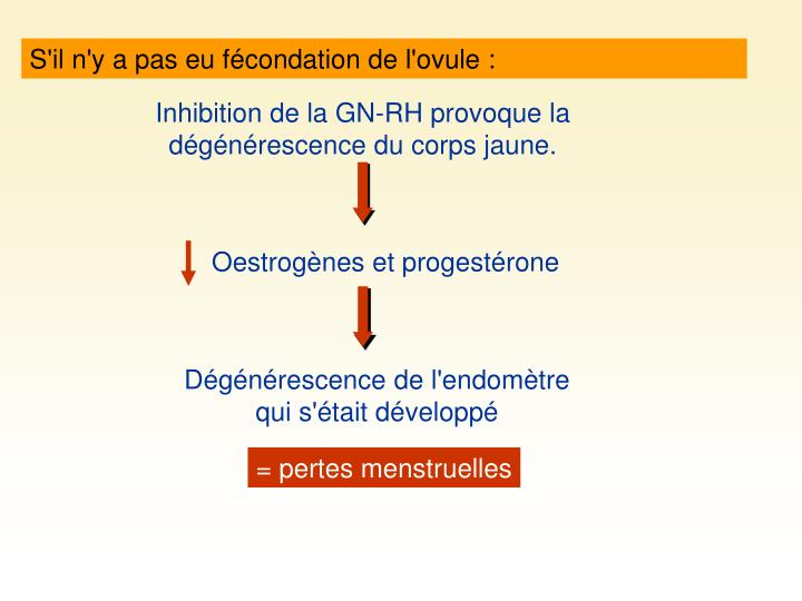 Oestrogènes et progestérone