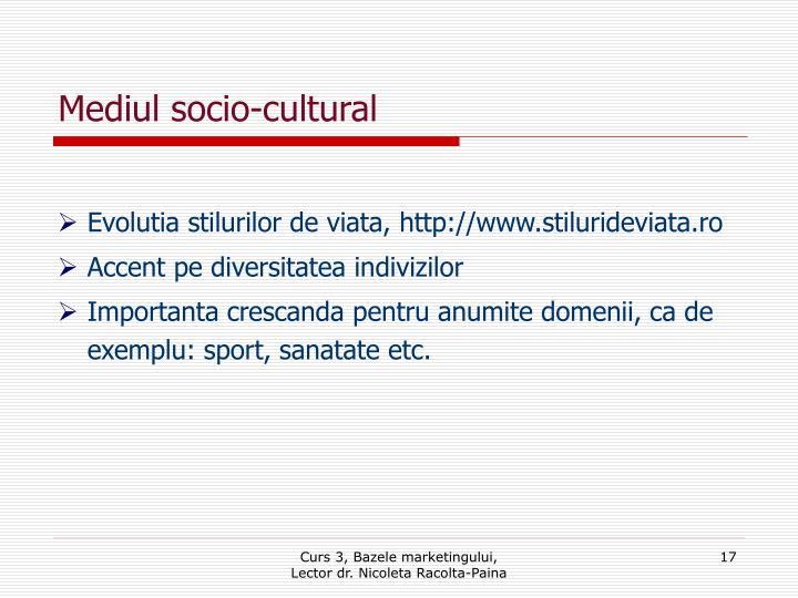 Mediul socio-cultural