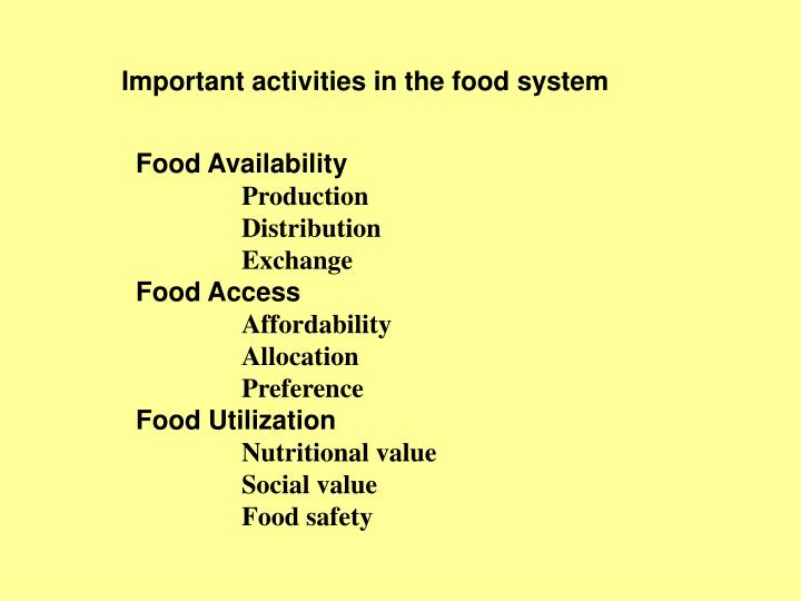 Important activities in the food system