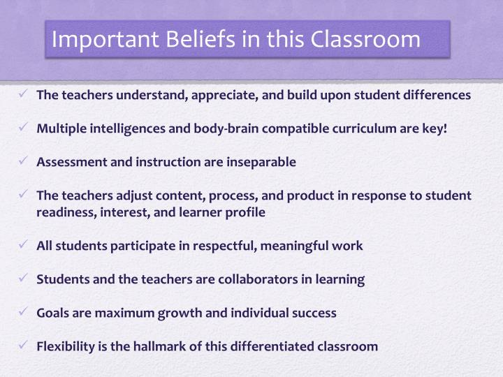 Important Beliefs in this Classroom