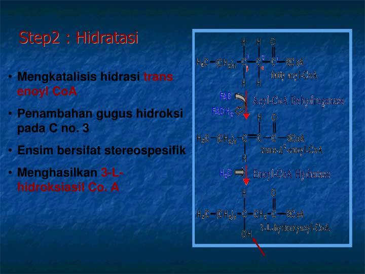 Step2 : Hidratasi