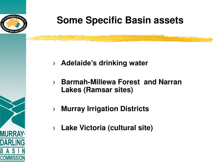 Some Specific Basin assets