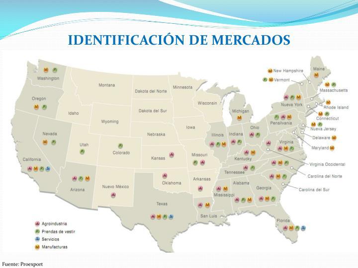 IDENTIFICACIÓN DE MERCADOS