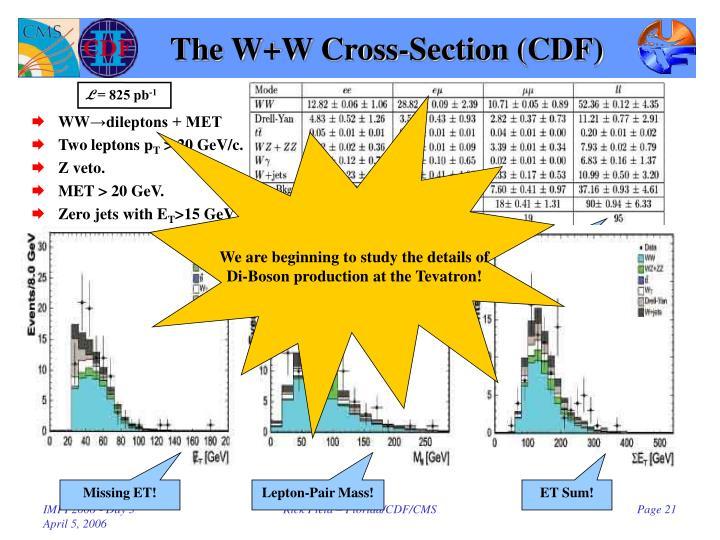 The W+W Cross-Section (CDF)