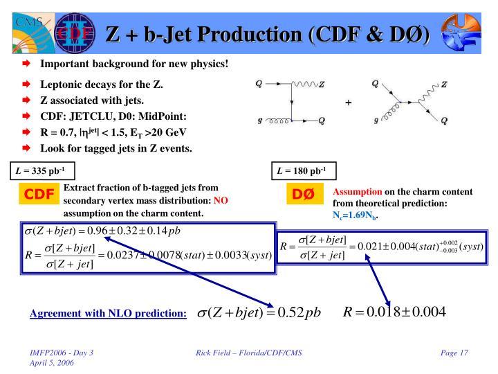 Z + b-Jet Production (CDF & D