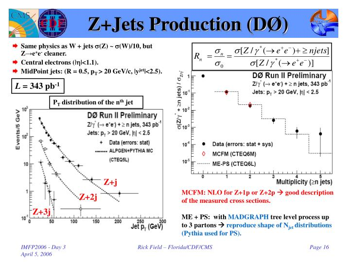 Z+Jets Production (D