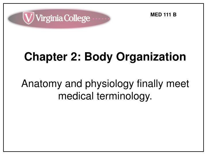 Chapter 2: Body Organization
