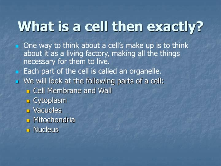 What is a cell then exactly?