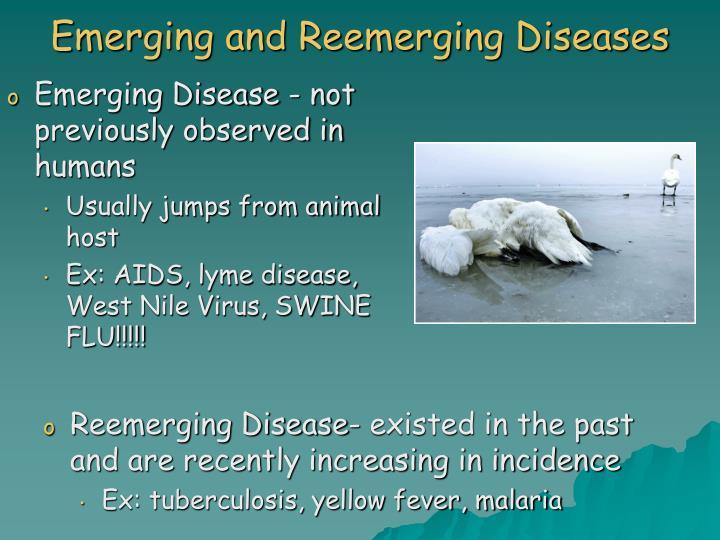Emerging and Reemerging Diseases