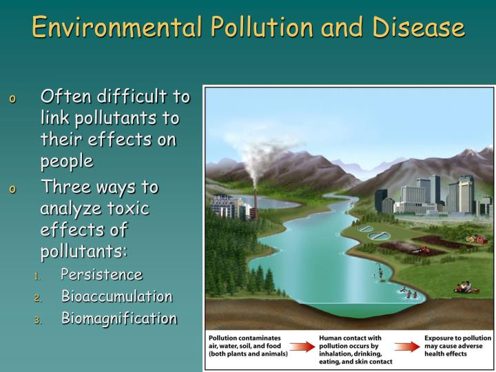 Environmental Pollution and Disease