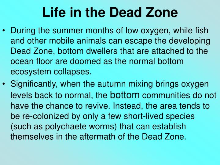 Life in the Dead Zone