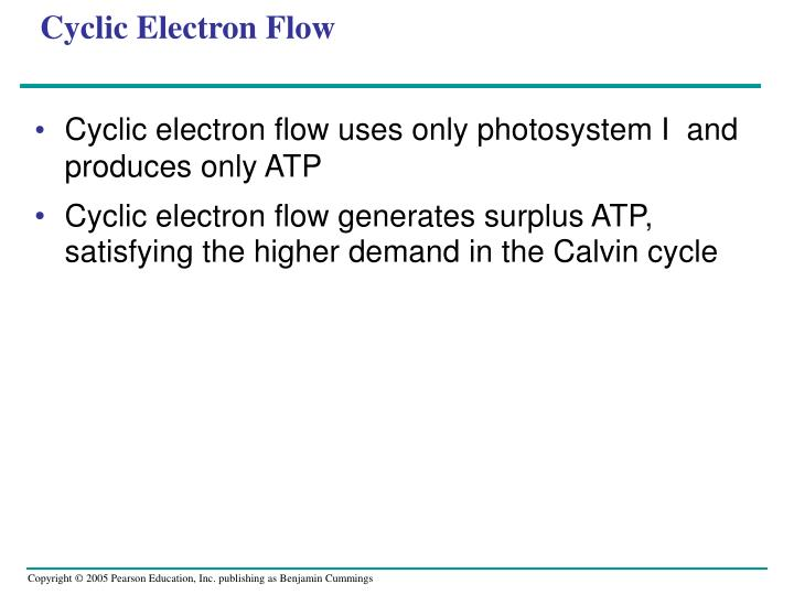 Cyclic Electron Flow