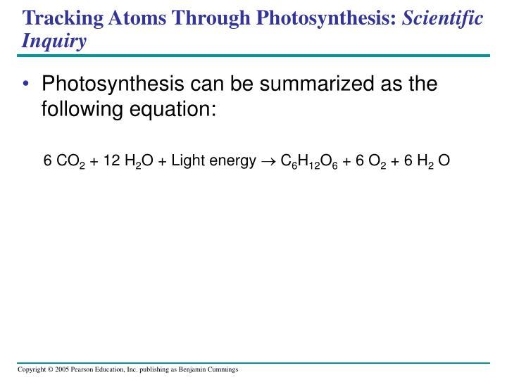 Tracking Atoms Through Photosynthesis: