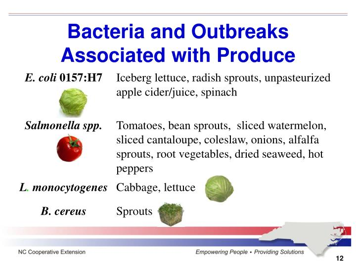 Bacteria and Outbreaks Associated with Produce