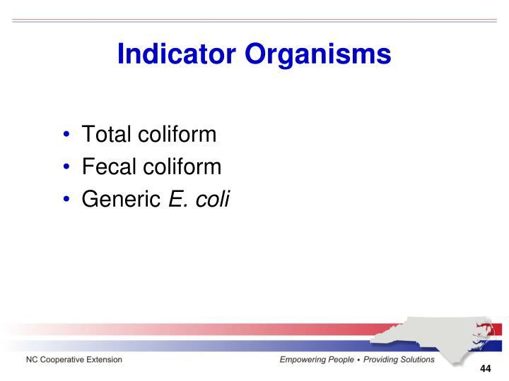 Indicator Organisms