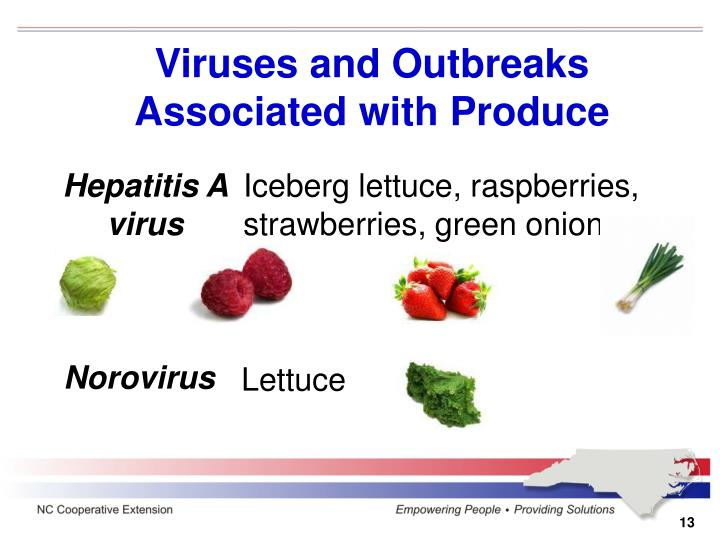 Viruses and Outbreaks Associated with Produce