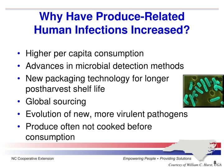 Why Have Produce-Related Human Infections Increased?