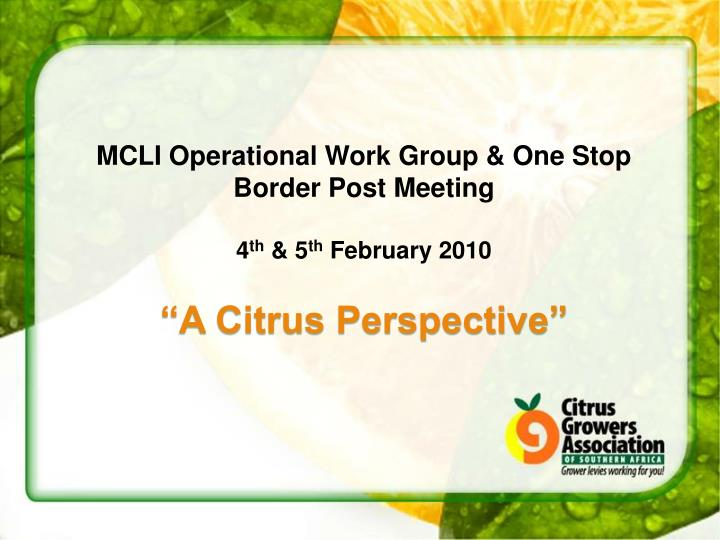 MCLI Operational Work Group & One Stop Border Post Meeting