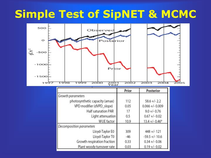 Simple Test of SipNET & MCMC