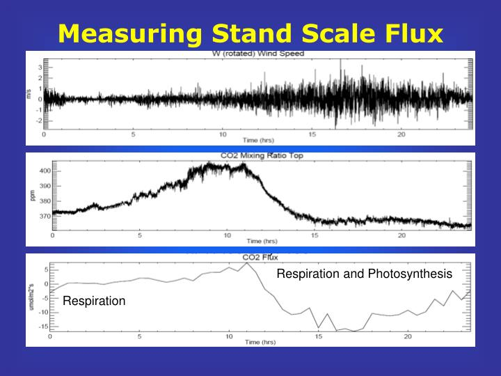Measuring Stand Scale Flux