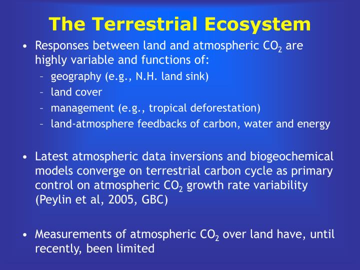 The Terrestrial Ecosystem