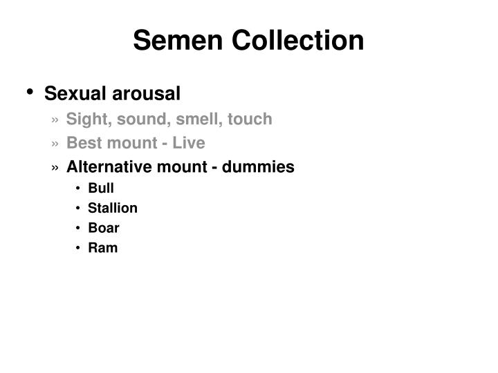 Semen Collection
