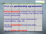 what are partnership agreements