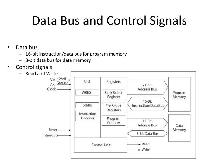 Data Bus and Control Signals