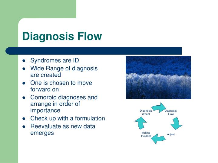 Diagnosis Flow