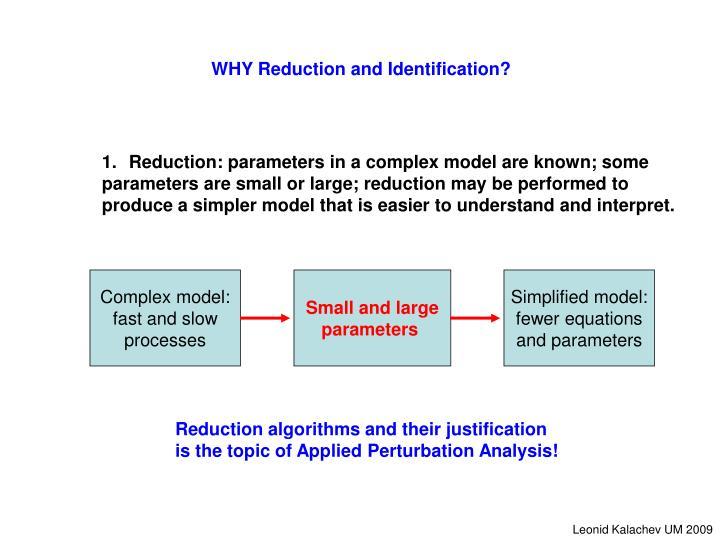 Complex model: