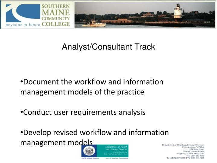 Analyst/Consultant Track