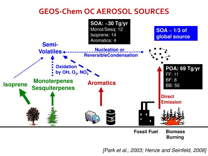 GEOS-Chem OC AEROSOL SOURCES