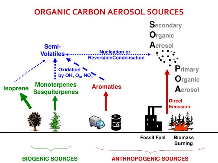 Organic carbon aerosol sources