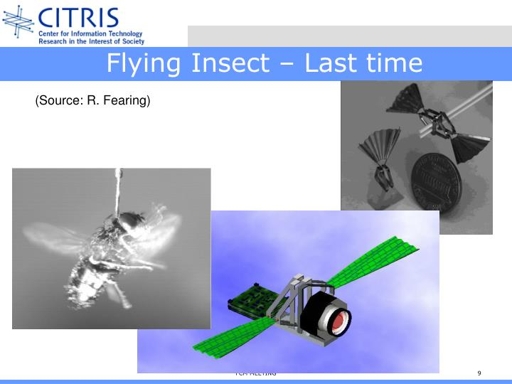 Flying Insect – Last time