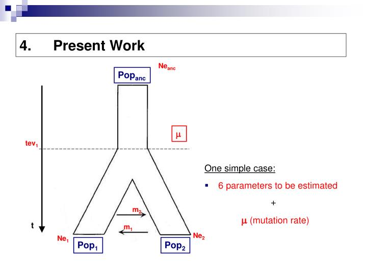 Present Work
