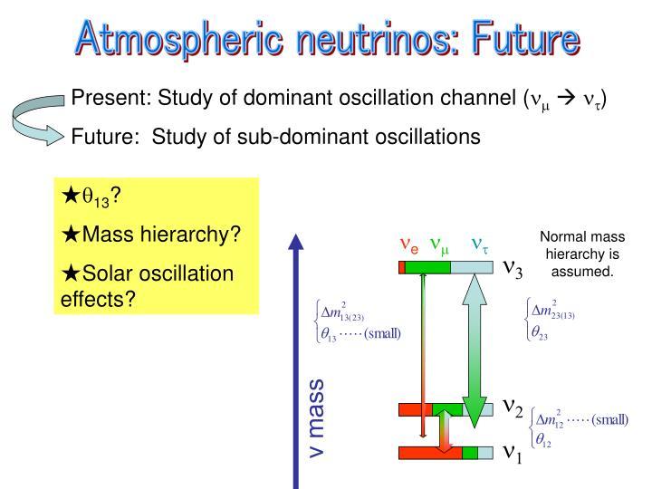 Atmospheric neutrinos: Future