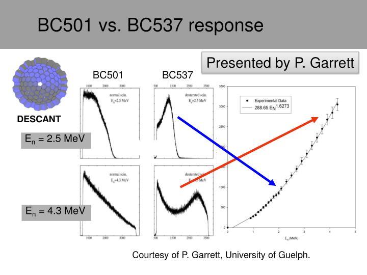 BC501 vs. BC537 response