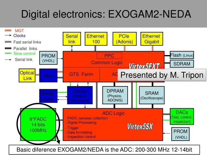 Digital electronics: EXOGAM2-NEDA