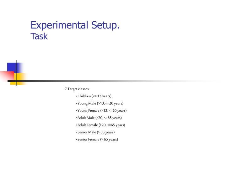 Experimental Setup.